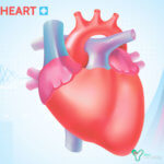 Лечение пороков сердца в Германии