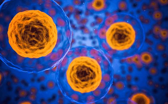 Лейкемия: как свести к минимуму риски осложнений